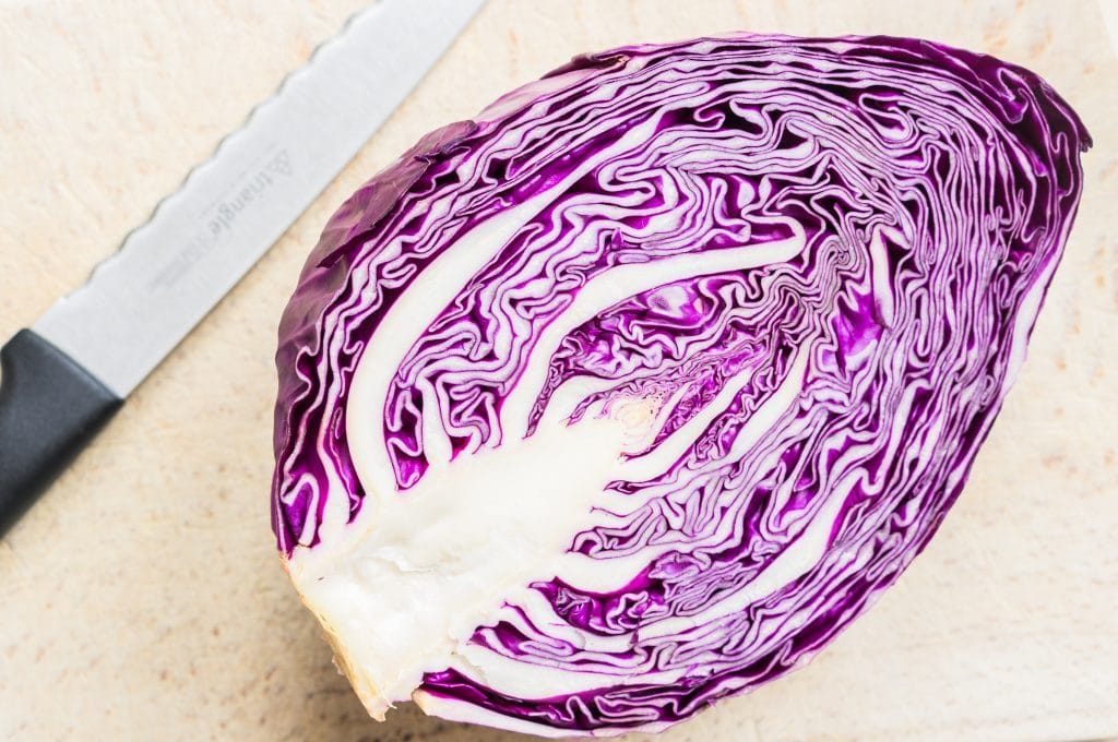 Pointed red cabbage