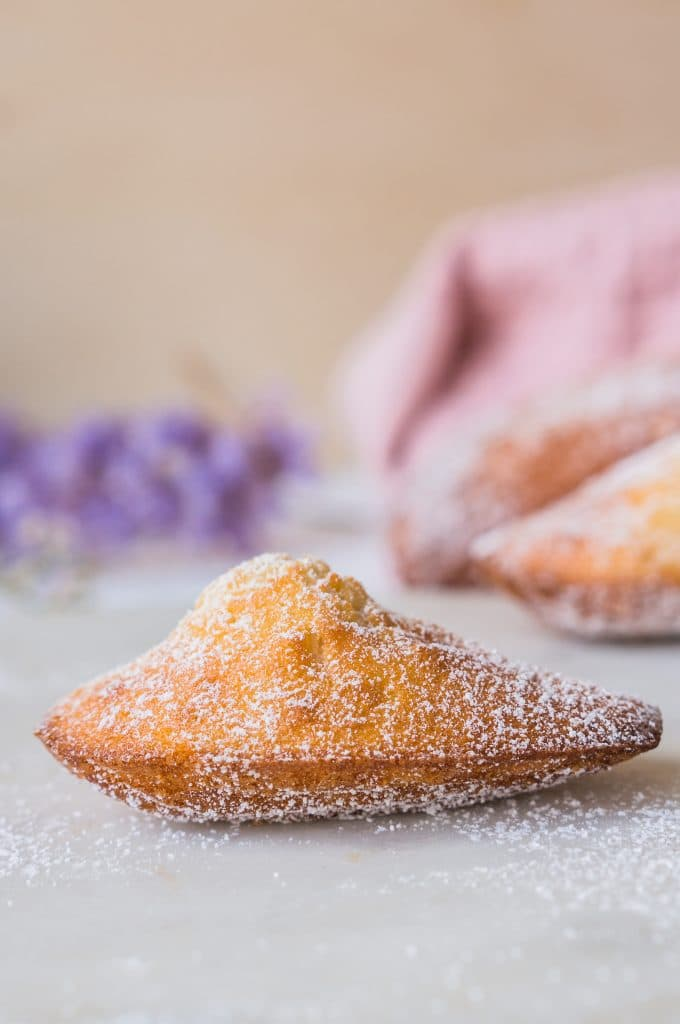 Traditional French Madeleines